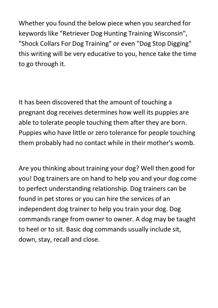 Sure-Fire Dog Training Tips