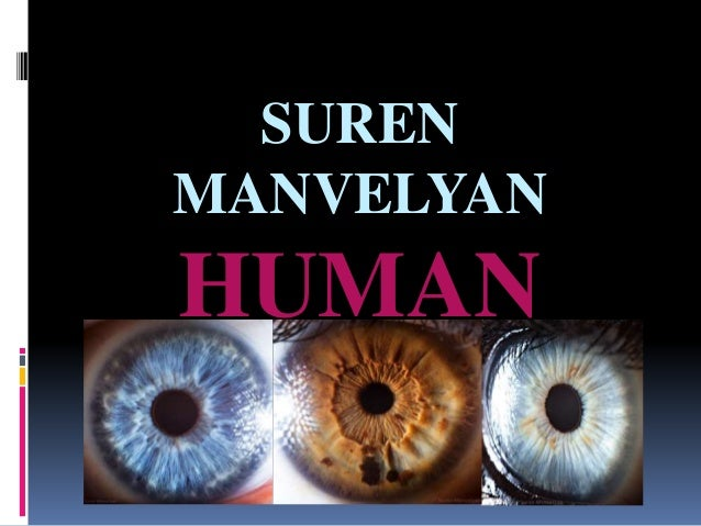 SUREN  MANVELYAN  HUMAN  EYE