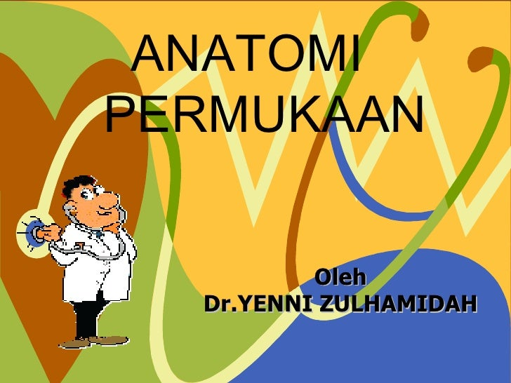 ANATOMI PERMUKAAN Oleh Dr.YENNI ZULHAMIDAH