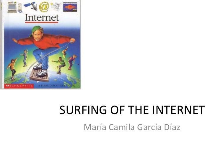 SURFING OF THE INTERNET<br />María Camila García Díaz<br />