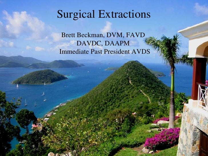 Surgical Extractions for Dogs and Cats