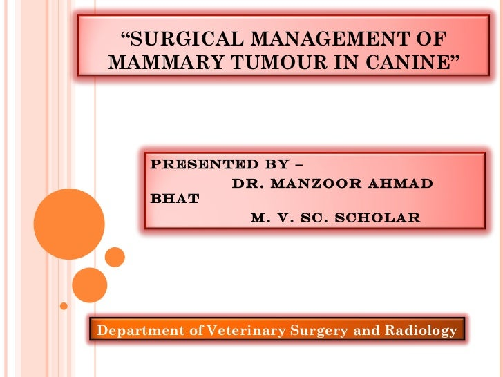 """"""" SURGICAL MANAGEMENT OF MAMMARY TUMOUR IN CANINE"""" Presented By –  Dr. Manzoor Ahmad bhat m. v. sc. Scholar  Department of..."""
