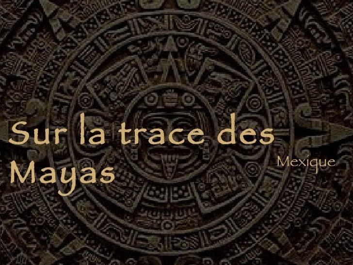 Mexique Sur la trace des Mayas