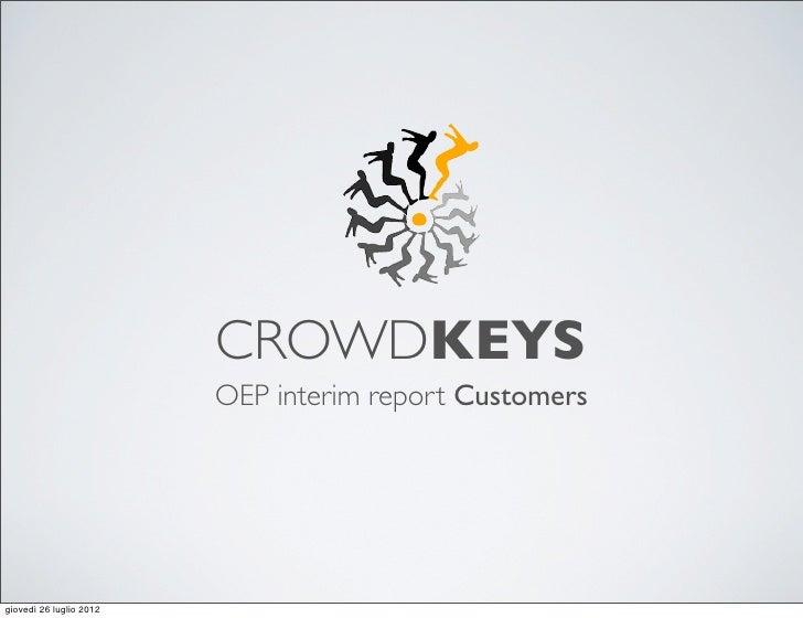 CrowdKeys Survey customers data