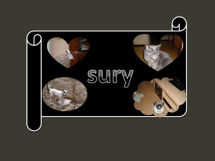 sury<br />