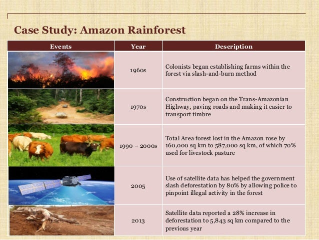deforestation case study amazon Deforestation of tropical rainforests - a case study of madagascar: for a zipped version of the html files, please click here abstract.