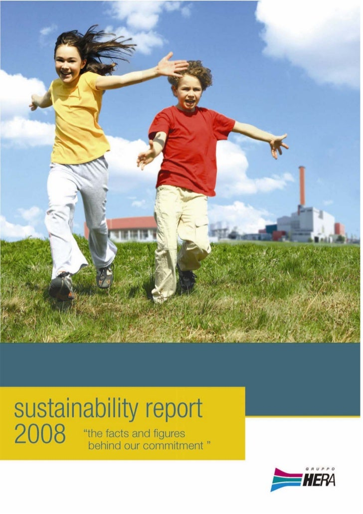 Sustainability report 2008
