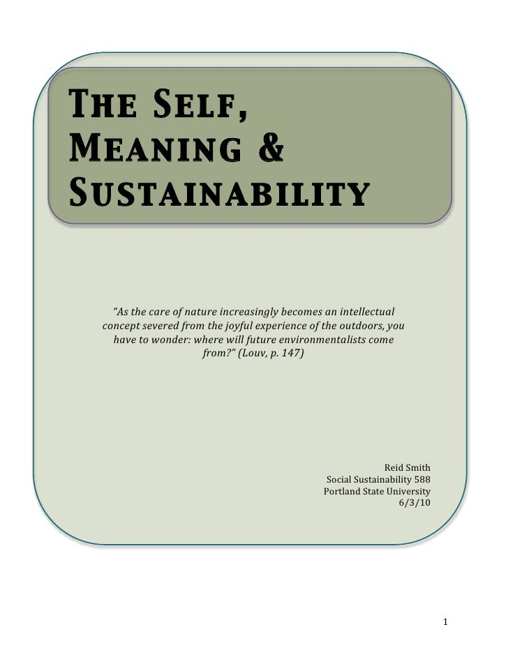 The Self, Meaning and Sustainability