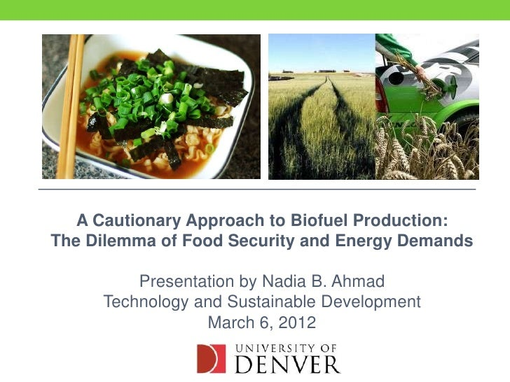 A Cautionary Approach to Biofuel Production:The Dilemma of Food Security and Energy Demands         Presentation by Nadia ...