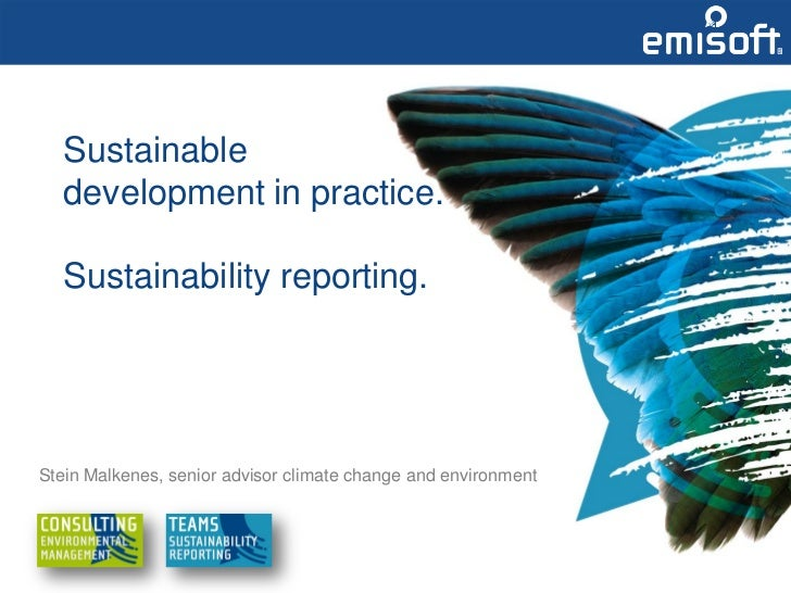 Sustainable   development in practice.   Sustainability reporting.Stein Malkenes, senior advisor climate change and enviro...