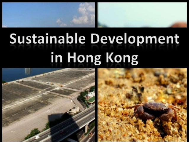 sustainable development business case study