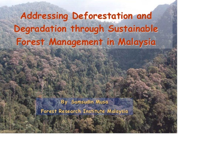 Addressing Deforestation andDegradation through SustainableForest Management in Malaysia            By Samsudin Musa     F...