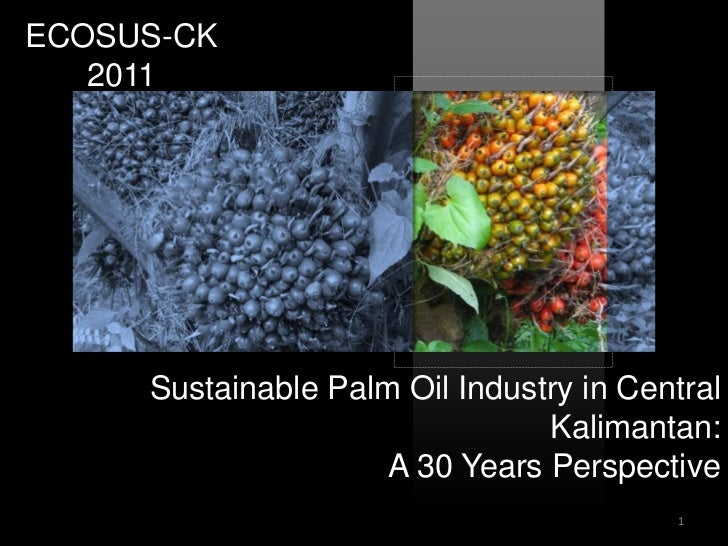 ECOSUS-CK   2011     Sustainable Palm Oil Industry in Central                                Kalimantan:                  ...