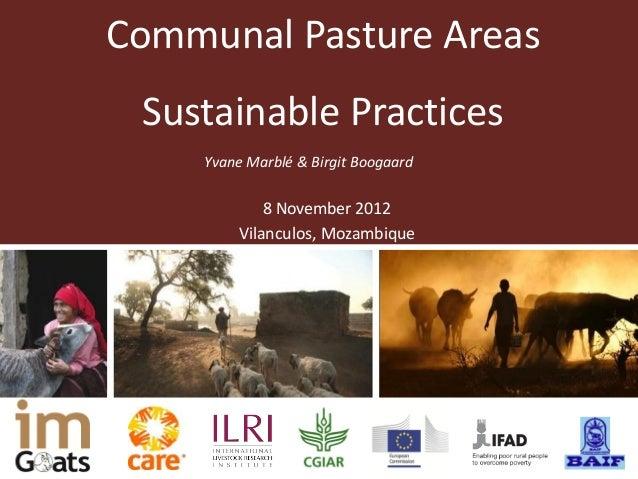 Communal Pasture Areas Sustainable Practices    Yvane Marblé & Birgit Boogaard            8 November 2012        Vilanculo...