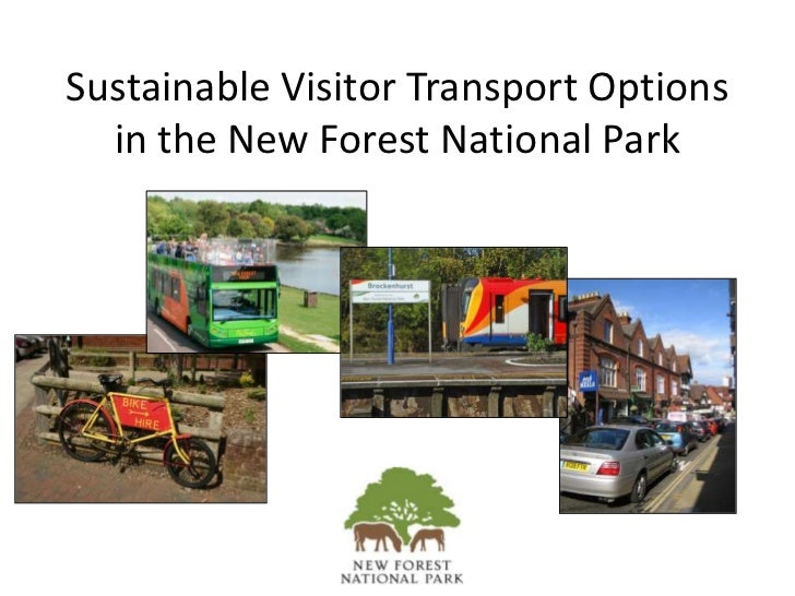 Sustainable Visitor Transport Options in the New Forest National Park<br />