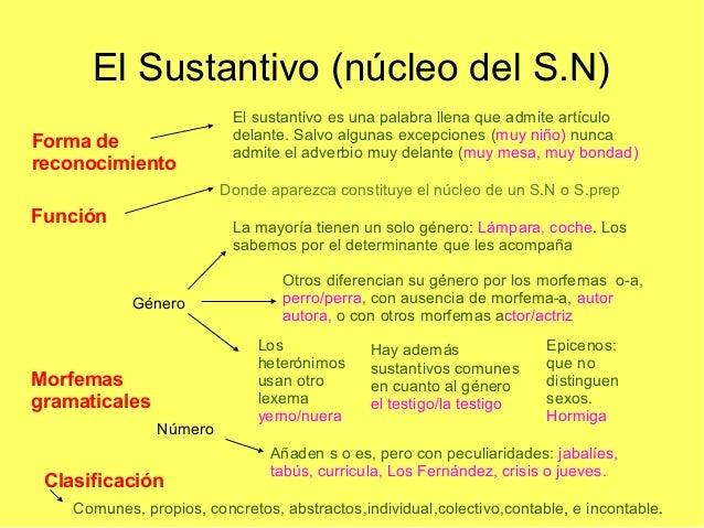 El Sustantivo (núcleo del S.N) Forma de reconocimiento  El sustantivo es una palabra llena que admite artículo delante. Sa...