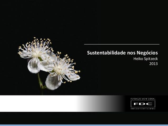 Sustentabilidade nos Negócios Heiko Spitzeck 2013