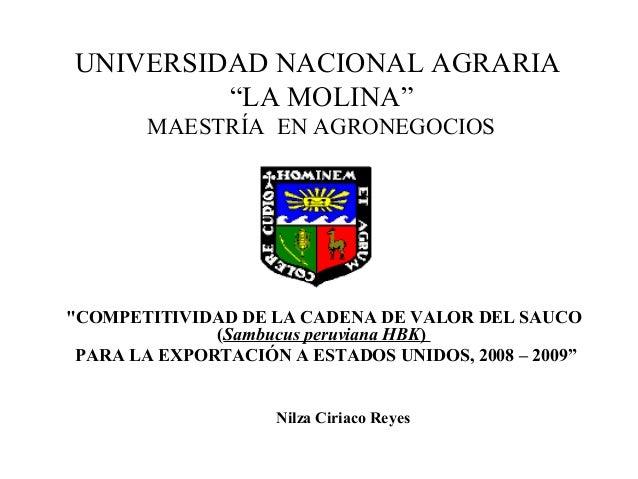 """UNIVERSIDAD NACIONAL AGRARIA """"LA MOLINA"""" MAESTRÍA EN AGRONEGOCIOS """"COMPETITIVIDAD DE LA CADENA DE VALOR DEL SAUCO (Sambucu..."""