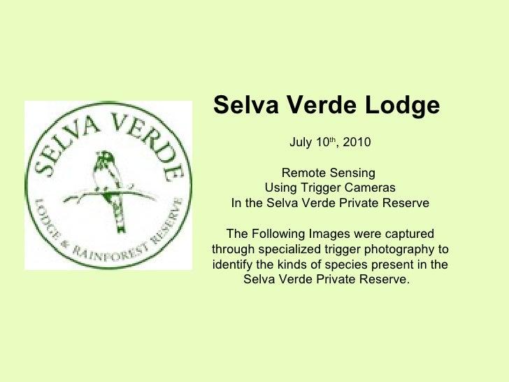Svl remote sensing july 2010