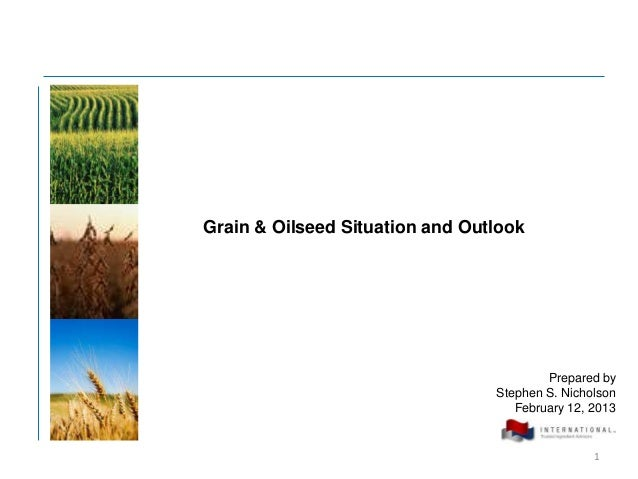 Grain & Oilseed Situation and Outlook                                         Prepared by                                 ...
