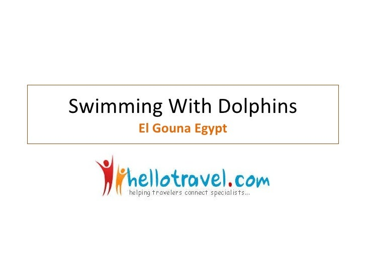 Swimming With Dolphins El Gouna Egypt