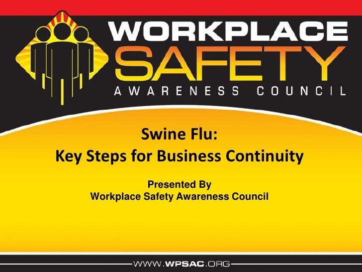 Swine Flu  Presentation