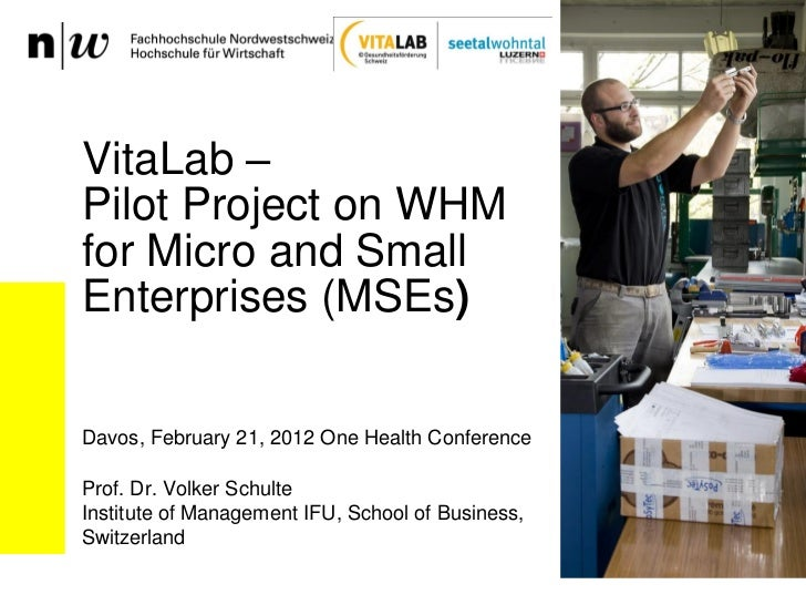 VitaLab –Pilot Project on WHMfor Micro and SmallEnterprises (MSEs)Davos, February 21, 2012 One Health ConferenceProf. Dr. ...