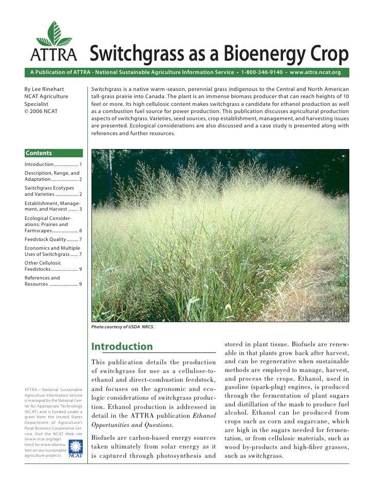 Switchgrass as a Bioenergy Crop