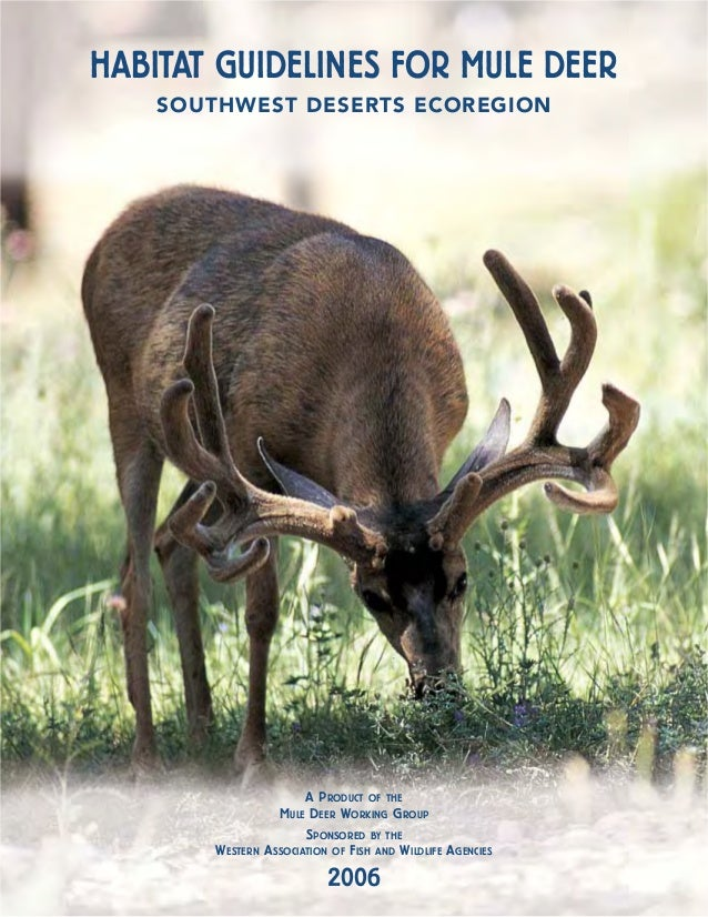 HABITAT GUIDELINES FOR MULE DEER    SOUTHWEST DESERTS ECOREGION                         A PRODUCT OF THE                  ...