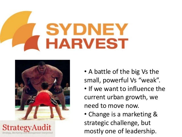 """• A battle of the big Vs the small, powerful Vs """"weak"""". • If we want to influence the current urban growth, we need to mov..."""