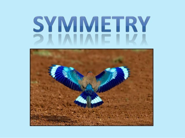 Aim: To identify symmetry and investigate with symmetry Objectives: Identify line and rotational symmetry Solve problems i...