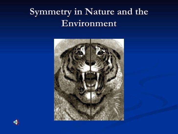 Symmetry Around Us
