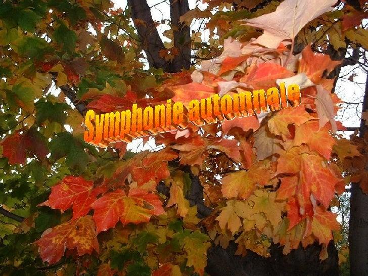 Symphonie automnale