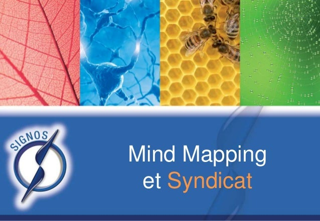 Mind Mapping et Syndicat