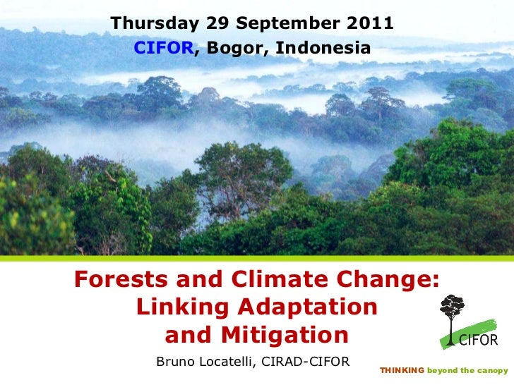 Forests and Climate Change: Linking Adaptation and Mitigation <ul><li>Bruno Locatelli, CIRAD-CIFOR </li></ul>Thursday 29 S...