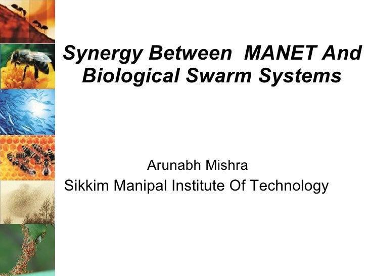 Synergy Between  MANET And Biological Swarm Systems Arunabh Mishra Sikkim Manipal Institute Of Technology