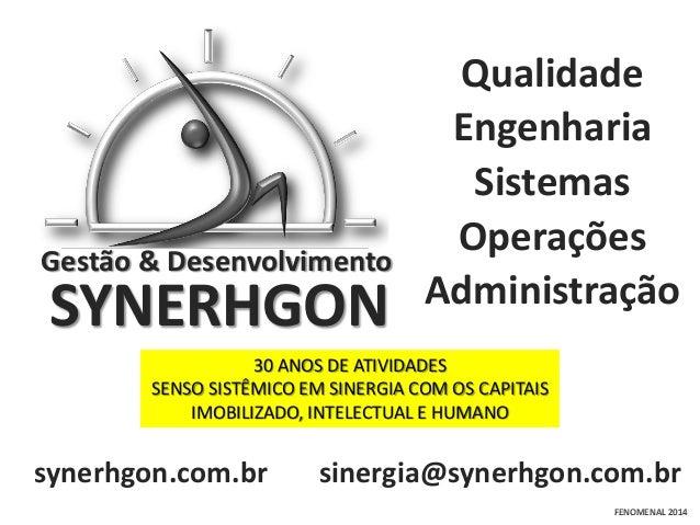 Gestão & Desenvolvimento  SYNERHGON  Qualidade Engenharia Sistemas Operações Administração  30 ANOS DE ATIVIDADES SENSO SI...