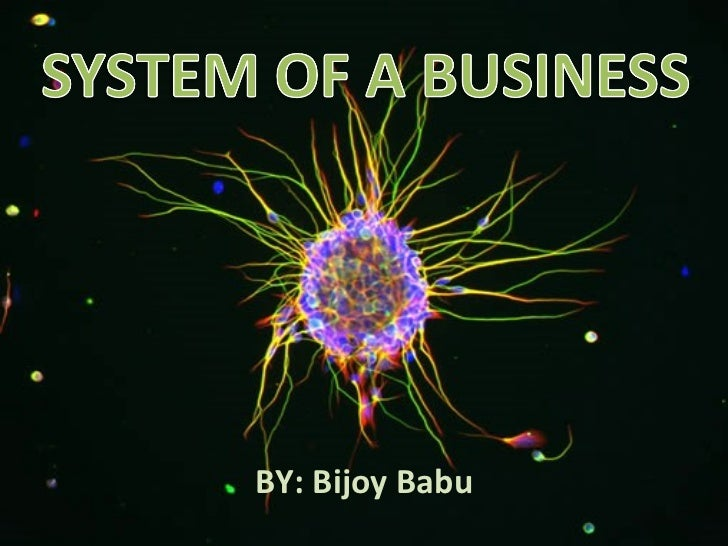 System of a Business