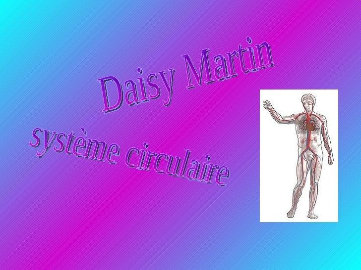 Daisy Martin système circulaire