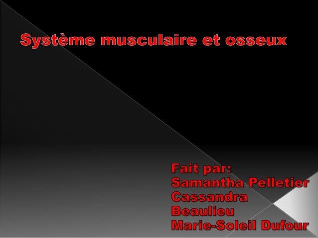 Il ya plus de 600 muscles dans le corps humain qui lui permette de bouger. Ils sont unis aux os par les tendons musculaire...