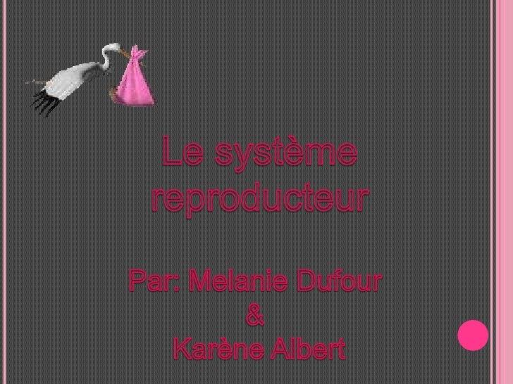 Le système <br />reproducteur<br />Par: Melanie Dufour <br />& <br />Karène Albert<br />