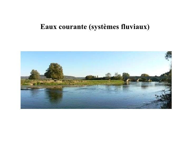 Eaux courante (systèmes fluviaux)