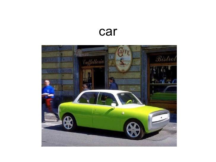 Szarotka6