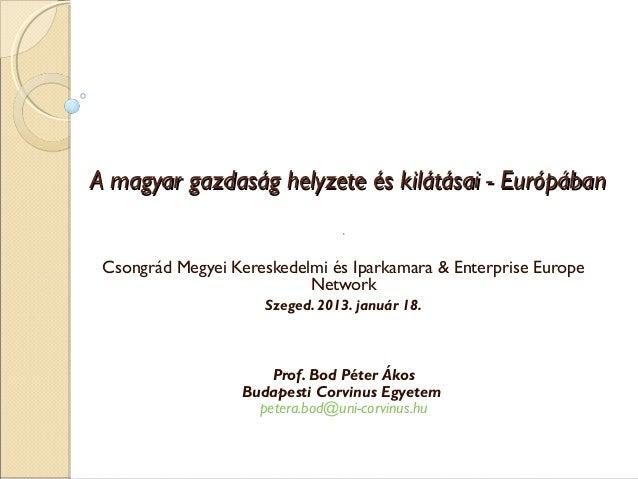 Bod Péter Ákos - Gazdasági helyzetértékelés, 2013-as kilátások