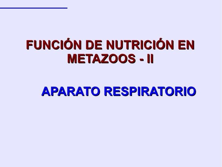 APARATO RESPIRATORIO FUNCIÓN DE NUTRICIÓN EN METAZOOS - II