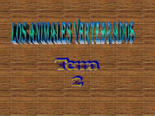 T.2 animales vertebrados