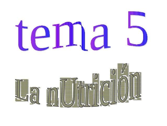 La función de nutrición La nutrición: La función de nutrición proporciona a nuestras células la energía necesaria para rea...