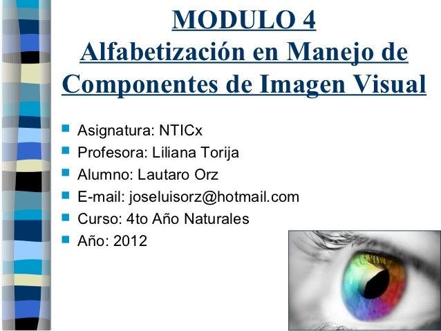MODULO 4 Alfabetización en Manejo deComponentes de Imagen Visual   Asignatura: NTICx   Profesora: Liliana Torija   Alum...