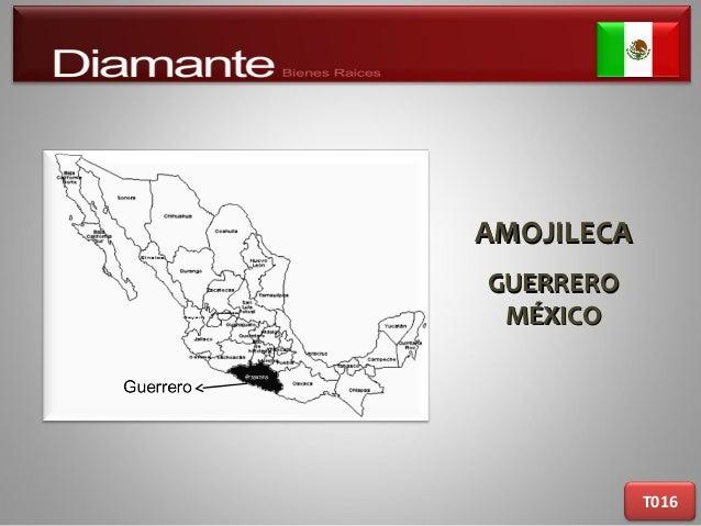 AMOJILECAAMOJILECA GUERREROGUERRERO MÉXICOMÉXICO T016