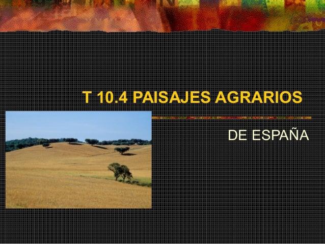T 10.4 PAISAJES AGRARIOS DE ESPAÑA
